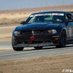 2010-2014 Mustang Spec GT-250  Rear Wing