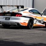 GT-250 2015-17 Mustang Spec