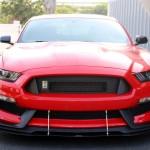 2016-17 Mustang Shelby GT-350 Splitter